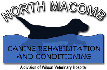 North Macomb Canine Rehabilitation